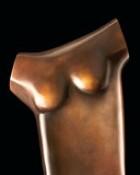 Torso-Form